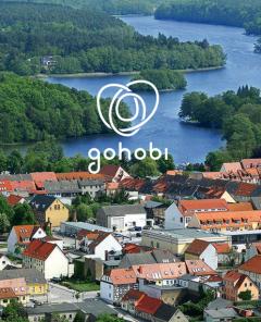 Unterstütze regionale Unternehmen mit der App von gohobi