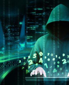 25-jähriger Darknet-Unternehmer und Multimillionär erhängt sich