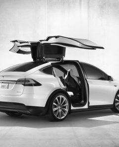 Schweizer Polizei ersetzt Diesel-Fahrzeuge mit sieben Tesla Model X