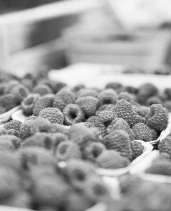 Feneberg stellt Freshfoods nach sieben Jahren ein (Fotomaterial: Pixabay)