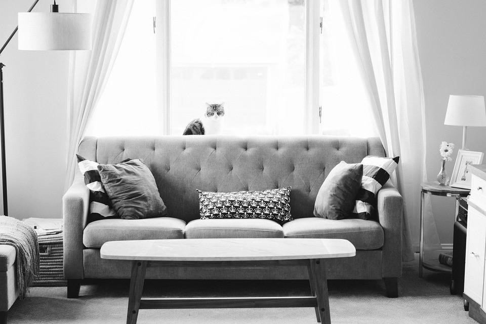 Online-Mietservice Otto Now vermietet jetzt auch Möbel (Foto: Pixabay)