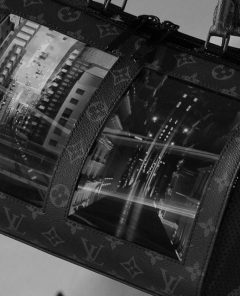 louislouis-vuitton-tv-screen-bag