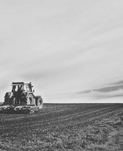 Tier- und Pflanzenarten schützen mit künstlicher Intelligenz: Agrarsysteme der Zukunft (Foto: Pixabay)
